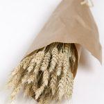 Ramo de trigo